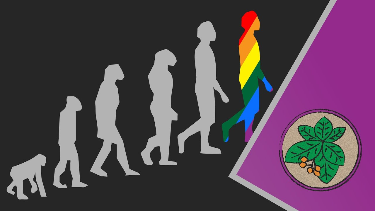 does sexual abuse lead to homosexuality Hostility and discrimination against homosexual individuals are well-established facts on occasion, these negative attitudes lead to hostile verbal and physical acts against gay individuals with little apparent motivation except a strong dislike.