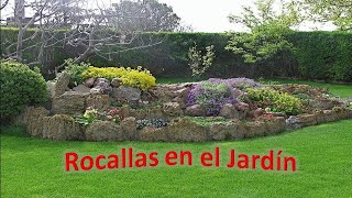 Rocallas en el Jardin