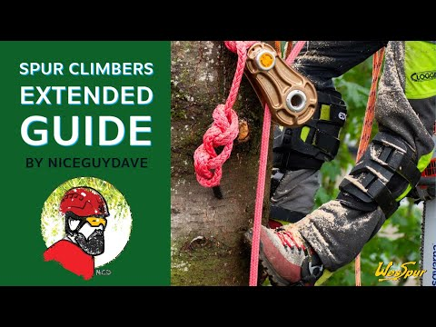 Spur Climbers For Tree Work  - Extended Guide With WesSpur's Niceguydave