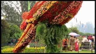 Ooty Flower Show 2012 - Rose Garden.f4v