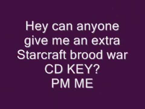 Starcraft CD Key