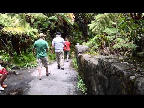 BioBlitz 2015: Hawaiʻi Volcanoes National Park
