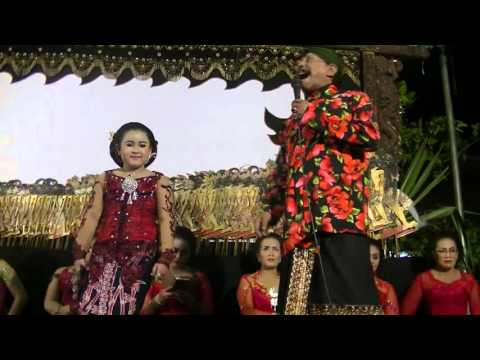 Cucak Rowo - Niken vs Lek Doel