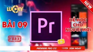 Bài 9: Cách chỉnh âm thanh (audio) và lọc tạp âm,tiếng ồn (khử noise) trong Adobe premiere 2018