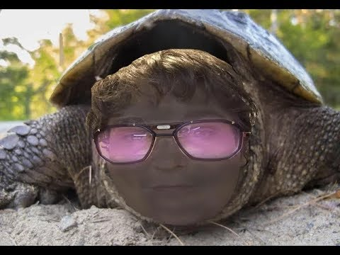 Andy Milonakis Claims He Created Memes