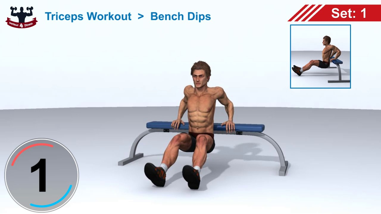 Lovely Bench Dips Workout Part - 10: Bench Dips For Triceps Workout (Burns Calories 68)