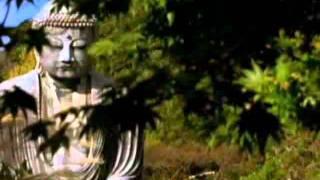 聖賢教育 改變命運 第1張dvd 01為甚麼觀看這部紀錄片