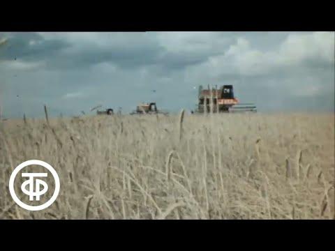 СССР - общество без кризисов (1977)