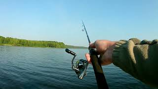 рыбалка у ж д моста проверка старых точек по окуню