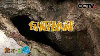 《地理·中国》 20201120 奇趣大自然·旬阳秘藏  CCTV科教 - YouTube