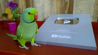 Talking Parrot Family Unboxing Their YouTube Silver Play Button