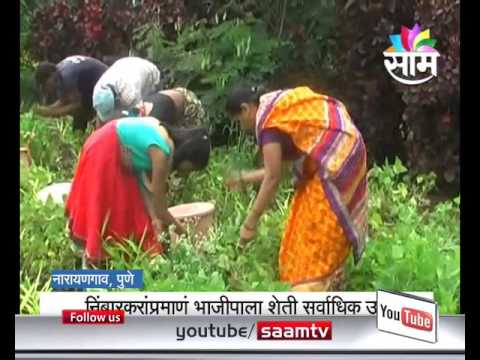 Santosh NImbarkar's natural vegetable farming success story
