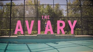 THE AVIARY | Short Film