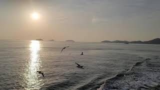 장봉도가는바닷길