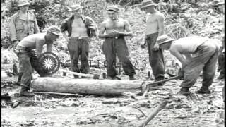 Gis And Natives Build A Log Bridge And An M-3 Tank Moves Across The Bridge In Bun...hd Stock Footage