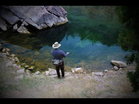 Utah's Green River - Fly Fishing The Aquarium