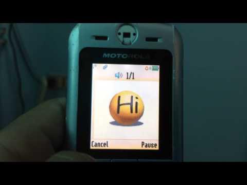 Motorola SLVR L6 MMS Templates