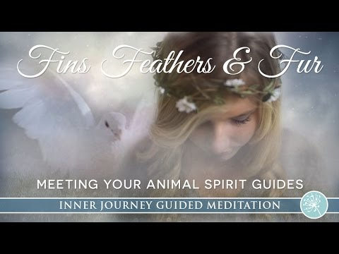 Meet Your Animal Spirit Guides ~ Beautiful Guided Meditation Journey