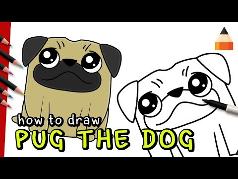 Drawing Pug How To Draw Dog Easy Drawing Dog For Kids Youtube