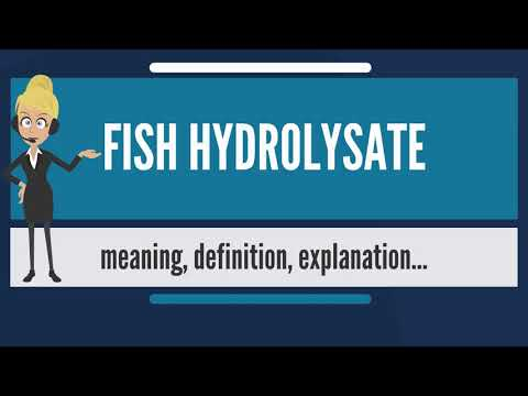 What Is FISH HYDROLYSATE? What Does FISH HYDROLYSATE Mean? FISH HYDROLYSATE Meaning & Explanation