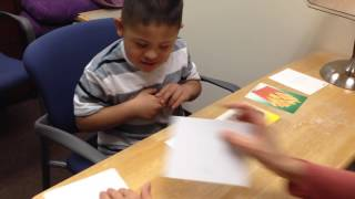 Down Syndrome Working Memory Game