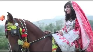 Kashmala Gul Pashto New Song 2016 Funny Clips