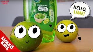 Bé học tiếng Anh về các loại quả Fruits  [Trọn bộ 20 chủ đề từ vựng sách Let's go] [Lioleo Kids]