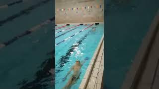 ALSENA - Детское плавание - Тренер Юрченко В.В.
