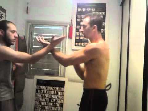 Download Wing Chun Israel -- Semifree chisao, level siu lim tao(no steps)