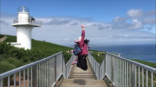 北海道にある鳥の楽園。天売島の赤岩崎