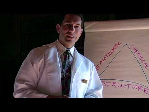 San Rafael Chiropractor - Triad Of Health Overview - Part 1