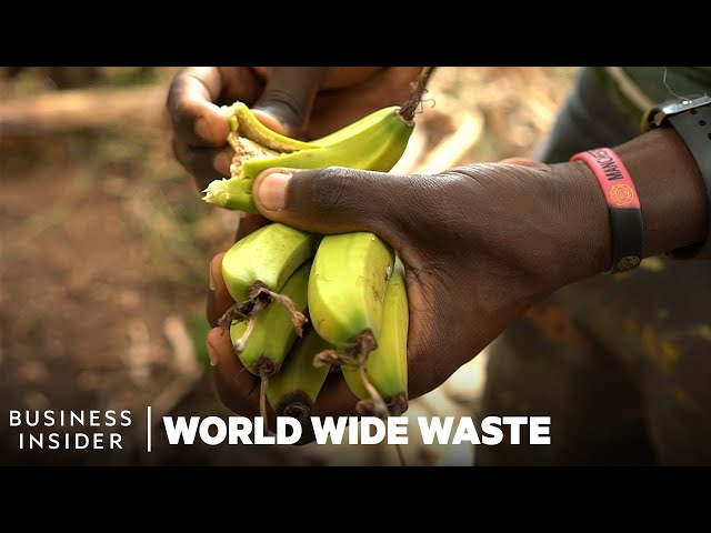 How Banana Waste Is Turned Into Rugs, Fabric, And Hair Extensions | World Wide Waste