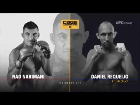 Daniel Requeijo VS Nad Narimani