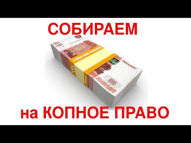 Собираем 1 млн рублей на копное право - Электронное копное право kopnik.org