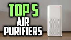 Best Air Purifiers in 2019 | Remove All Pollutants From The Air