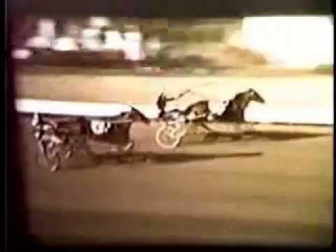 1961 Delaware County Fair HENRY T ADIOS Little Brown Jug