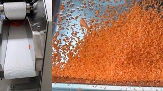 이노스텍 채소절단기 BTS-900 '당근 다지기…