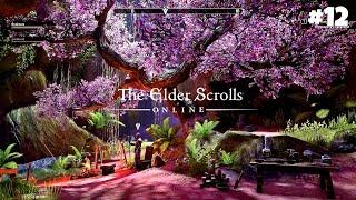 The Elder Scrolls Online - Прохождение #12: История пяти соратников