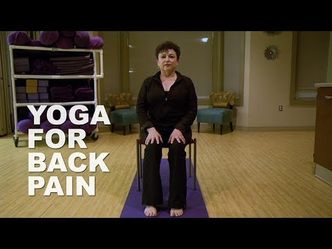 yoga for back pain  youtube