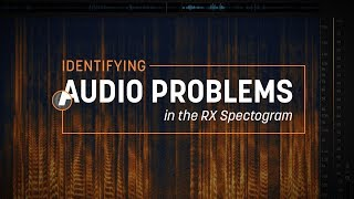 Identifying Audio Problems in the RX Spectrogram
