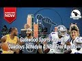 Gatewood Sports Report ft. DDP & Law Nation
