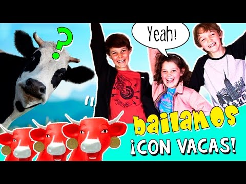¡¡BAILAMOS CON VACAS!! RETO Freestyle REALIDAD AUMENTADA: ¡¡El que pierde se disfraza de vaca!!