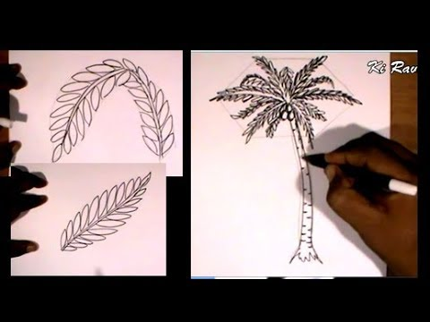 Latihan Menggambar Pohon Palm How To Draw Palm Youtube