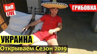 Грибовка 2019 | Прогулка, жилье, пляж, дороги, Одесская область, отдых в Украине, влог