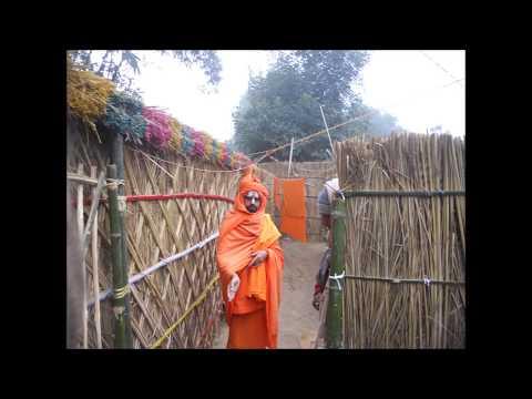 Swami Jee(Shreeman Narayan) by Bharat Sharma