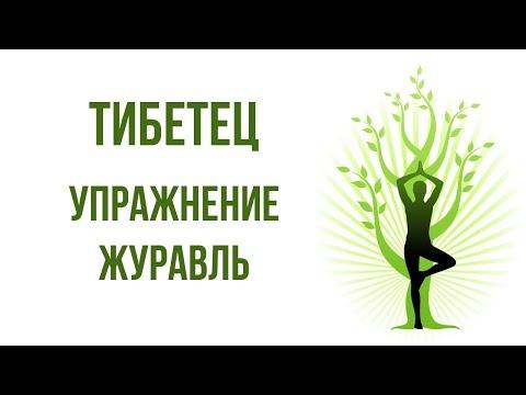 Часть I. Оздоровительная практика упражнений цигун для