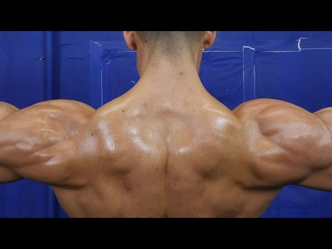 5 Exercises for HUGE Shoulder Gains