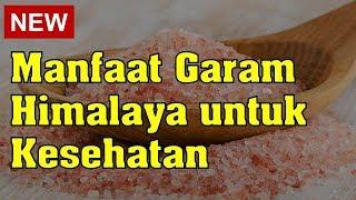 Garam Himalaya ARA HERB Himalayan Pink Salt Original