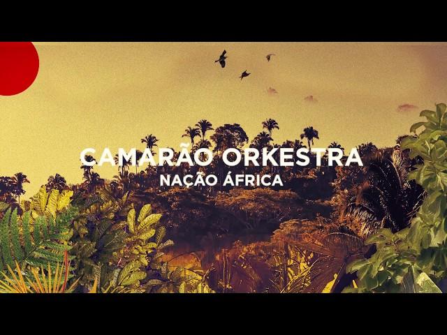 Camarão Orkestra - Nação África (Teaser)