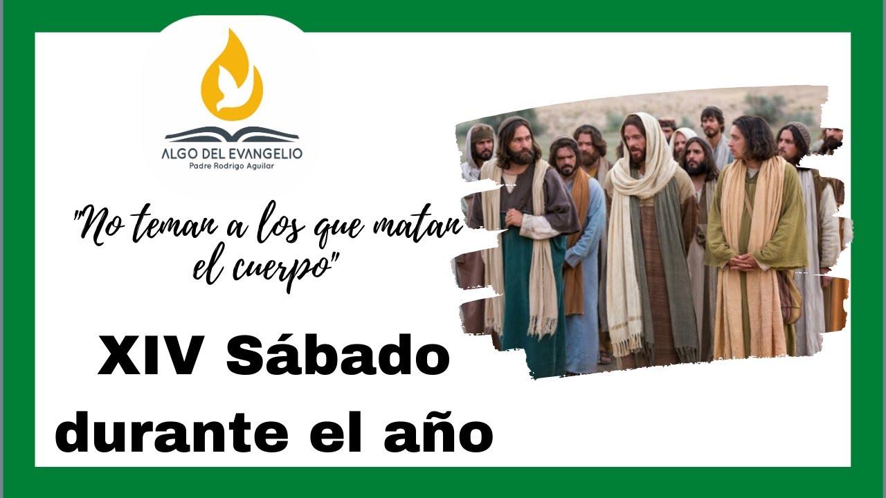 EVANGELIO DE HOY - XIV Sábado durante el año  - Mateo 10, 24-33 - No teman